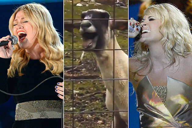 Kelly Clarkson Carrie Underwood Screaming Goat