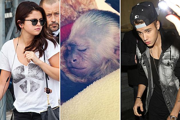 Selena Gomez Justin Bieber Mally Monkey
